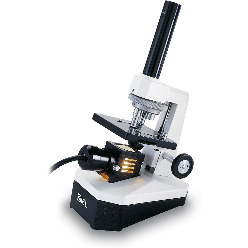 Ottico-Roggero-microscopio-Ziel-Gamma