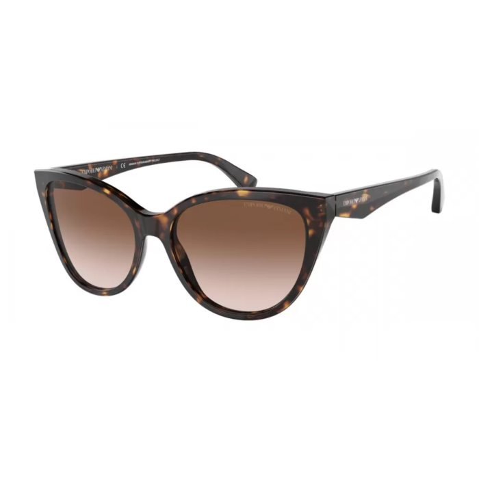 Ottico-Roggero-occhiale-sole-emporio-armani-ea-4162-587913-havana
