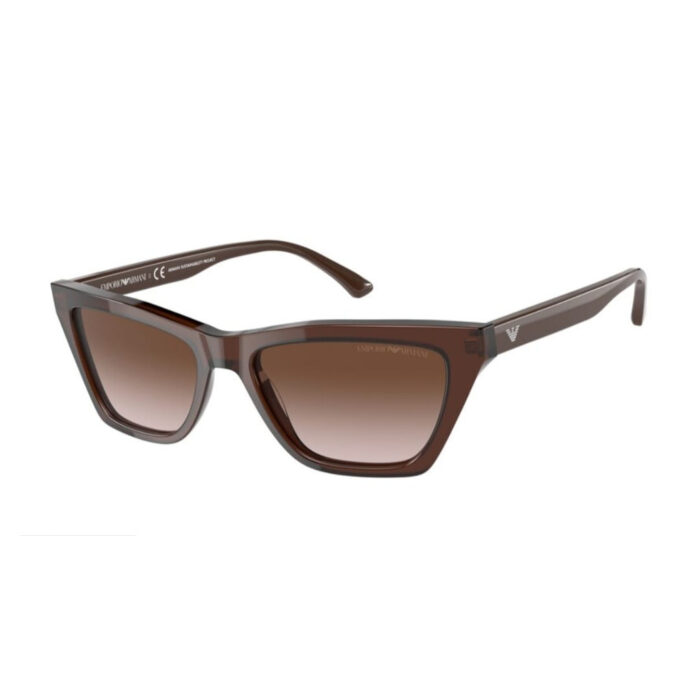 Ottico-Roggero-occhiale-sole-emporio-armani-ea-4169-5910-13